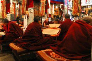 Ani Tsamkhong Nunnery nuns reading scriptures