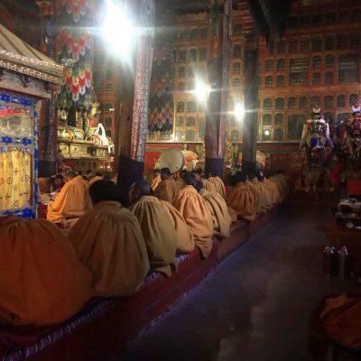 Monks chanting in Sakya monastery in Tibet