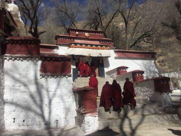 Monks walking to the Sera monastery in Tibet