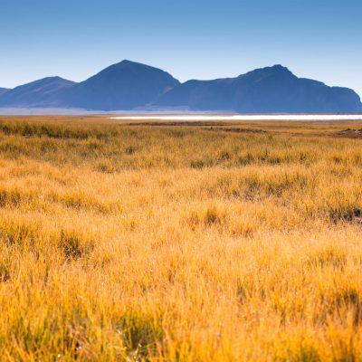 Zhari Namco Lake shore in Ngari Tibet