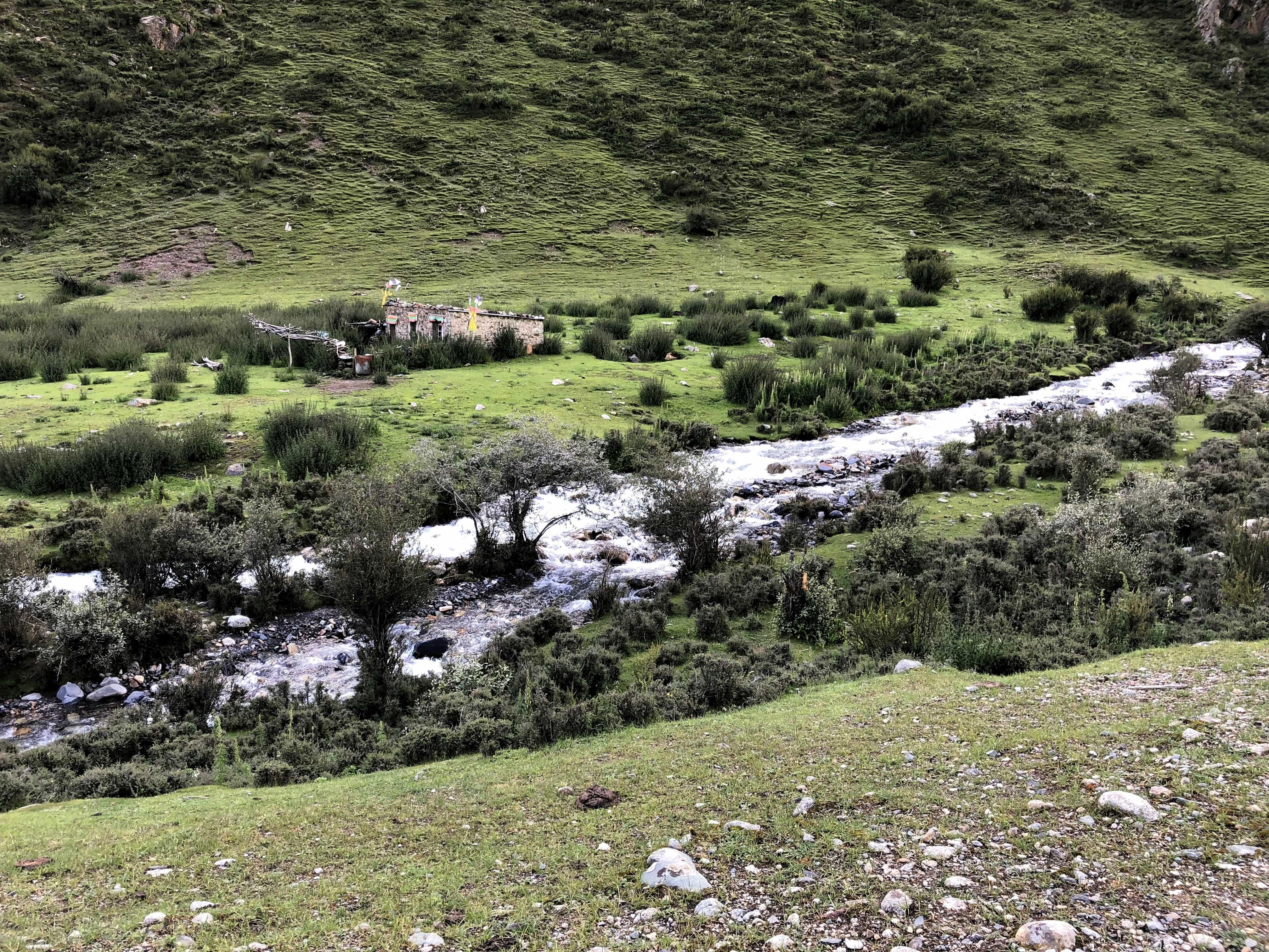Herders camp in Tibet