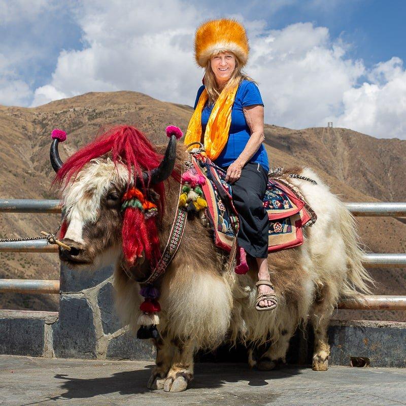 Taking photos on Yak in Tibet